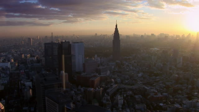 High angle lockdown of Tokyo cityscape at dusk