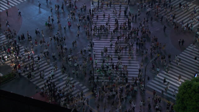 stockvideo's en b-roll-footage met high angle long shot of hundreds of people using a road crossing in the city of nagasaki.  - shibuya shibuya station