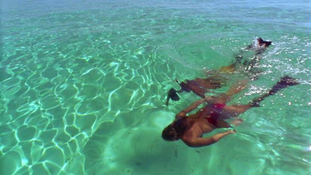 high angle man + woman snorkeling in clear water / Fiji