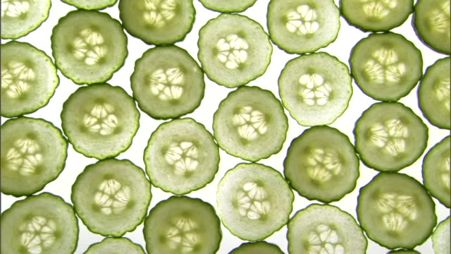 vídeos de stock, filmes e b-roll de high angle medium pan right of sliced cucumbers on a backlit surface. - medium group of objects