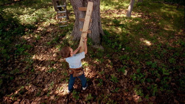 High angle medium shot boy tying wood planks together / tilt up man and boy pulling wood up to platform in tree