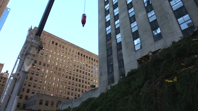 high angle mid shot, a 76-foot tall norway spruce, from shelton, ct, is lifted into position as the 2013 rockefeller center christmas tree on... - rockefeller center christmas tree stock videos & royalty-free footage