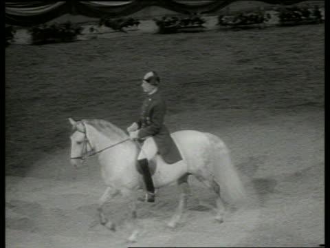 vídeos y material grabado en eventos de stock de b/w high angle of man riding white horse in arena / lippizan - herbívoro
