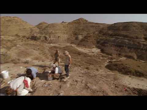 high angle over group digging at excavation site in hell creek formation / montana - badlands stock videos & royalty-free footage