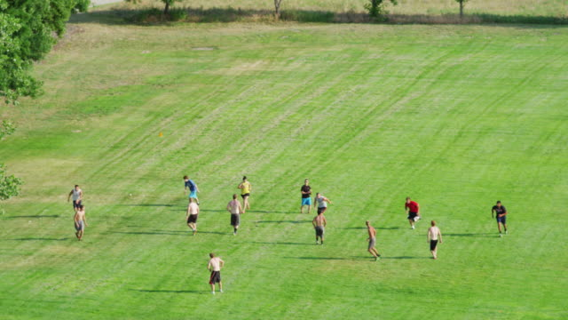 high angle overhead of 14 college students playing pick-up game of shirts vs skins touch football in a green grassy park. - touch football video stock e b–roll
