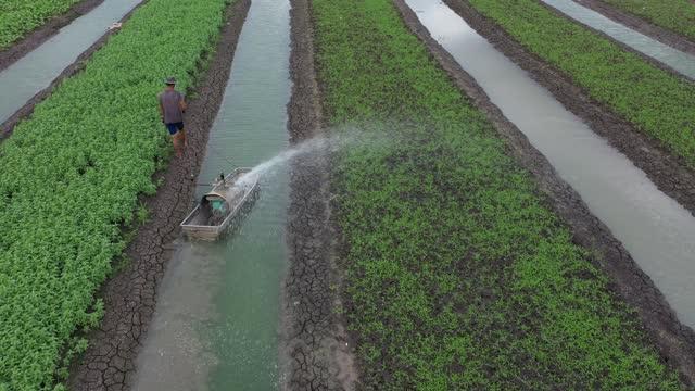 vídeos y material grabado en eventos de stock de high angle shot, drone flying above floating gardens. aerial shot over stunning inle lake in burma. south east asia drone shot, stunning farming on floating gardens - equipos de riego