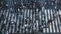 High Angle Shot of a Crowded Pedestrian Crossing in Big City. Augmented Reality Shows Visual Representation of Connected People with the Internet World, Technology Around Us and Wi-Fi  Wave Network.