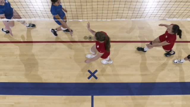 high angle shot of volleyball teams congratulating each other after a match - contest stock videos & royalty-free footage