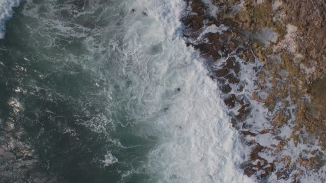 high angle shot of waves on rocky coastline - tulum mexico stock videos & royalty-free footage