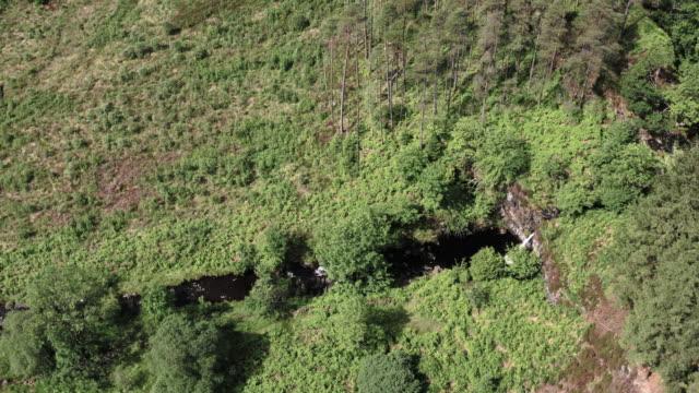 vidéos et rushes de vue latérale d'angle élevé d'une chute d'eau en cascade dans la petite rivière qui coule lentement dans un sud-ouest rural éloigné de l'ecosse - remote location