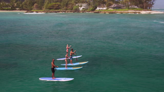 High angle side view of four stand up paddle boarders