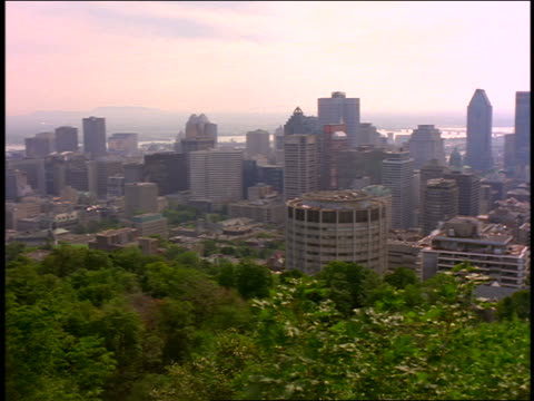 high angle pan skyline / trees in foreground / montreal, canada - montreal video stock e b–roll