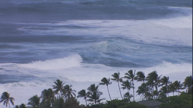 high angle static - waves surge onto a tropical hawaiian beach. / hawaii, usa - coastal feature stock videos & royalty-free footage