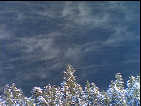 high angle time lapse mist moving on snake river with snowy trees in foreground / flaming gorge ntl park, utah or wyoming - river snake stock videos & royalty-free footage