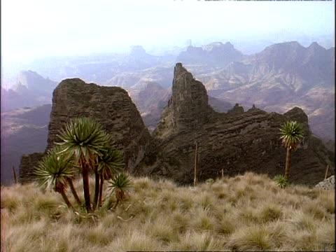 vídeos de stock e filmes b-roll de wa high angle view across simian mountain range, plants in foreground, hazy horizon, ethiopia, africa - distante
