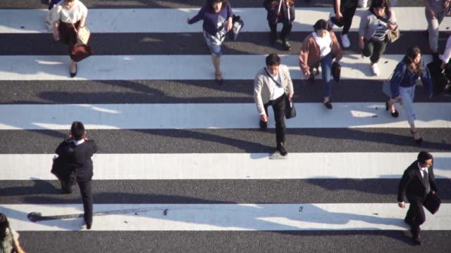 high angle view crowd people crossing zebra crossing at tokyo, japan. - pedestrian crossing stock videos & royalty-free footage