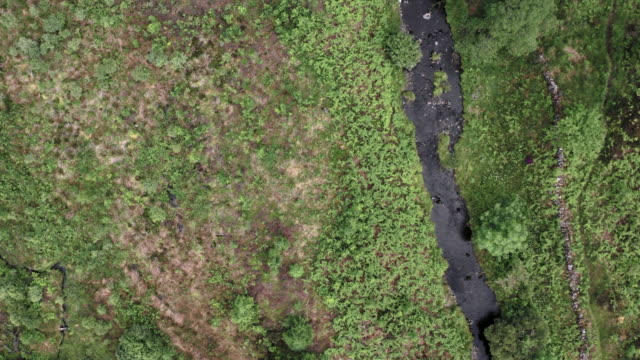 vidéos et rushes de vue d'angle élevé regardant vers le bas sur une petite rivière lente coulant dans un sud-ouest rural éloigné de l'ecosse - remote location