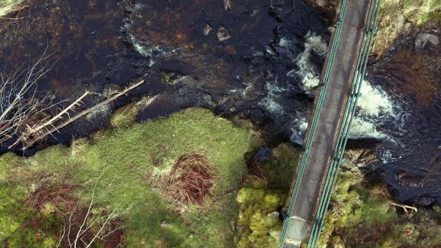 high angle view of a footbridge in scottish forest - forestry industry stock videos & royalty-free footage