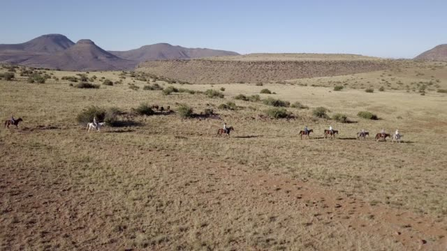 high angle view of a group of cattle ranchers - herding cattle stock videos & royalty-free footage