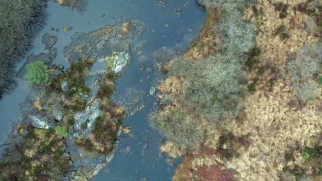 vídeos de stock e filmes b-roll de high angle view of a rocky scottish river with a low water level in remote dumfries and galloway. - johnfscott