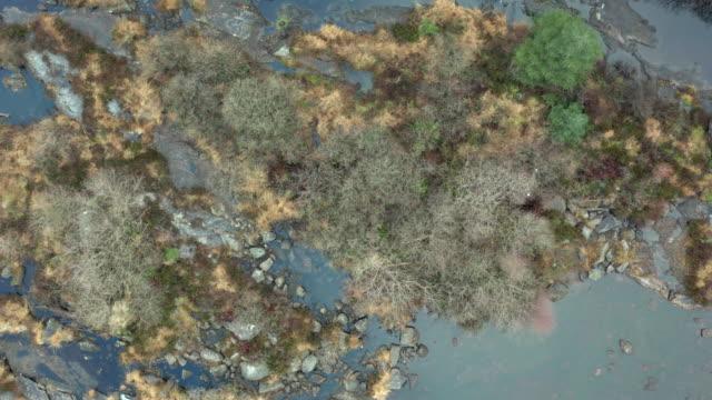 遠く離れたダンフリースとギャロウェイの低水位を持つ岩のスコットランドの川の高角図。 - johnfscott点の映像素材/bロール