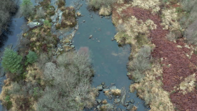 high angle view of a rocky scottish river with a low water level in remote dumfries and galloway. - johnfscott stock videos & royalty-free footage