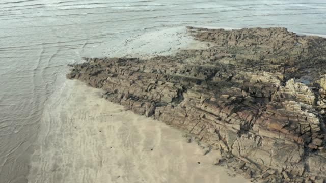 vídeos y material grabado en eventos de stock de vista de ángulo alto de una playa escocesa en una mañana de otoño mientras la marea sale - johnfscott