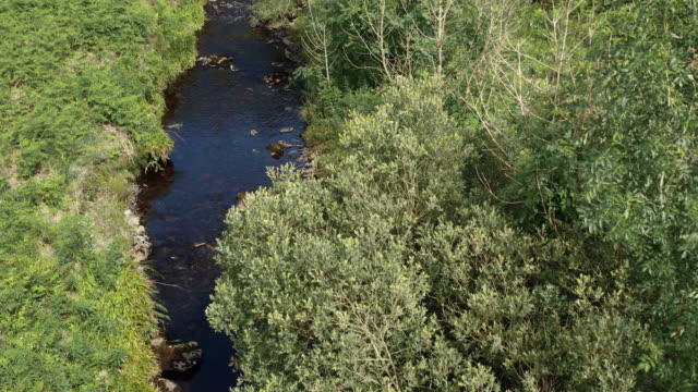 vidéos et rushes de vue d'angle élevé d'une petite rivière qui coule lentement dans un sud-ouest rural éloigné de l'ecosse - remote location
