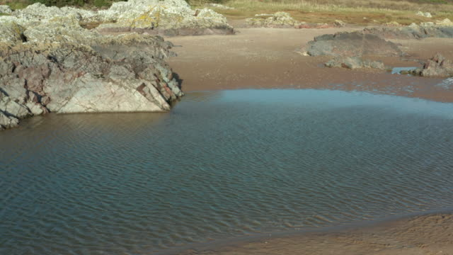 high angle view of a tidal pool on a beach at low tide in south west scotland - johnfscott stock videos & royalty-free footage