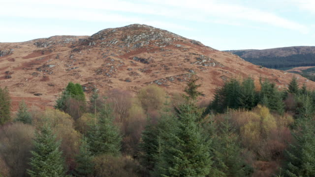high angle view of an uncultivated hill in a remote area of rural dumfries and galloway - johnfscott stock videos & royalty-free footage