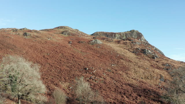 high angle view of an uncultivated hill in a remote area of rural dumfries and galloway - bracken stock videos and b-roll footage
