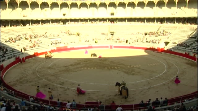 high angle view of bullfighting in arena in catalonia spain - bull animal stock videos & royalty-free footage