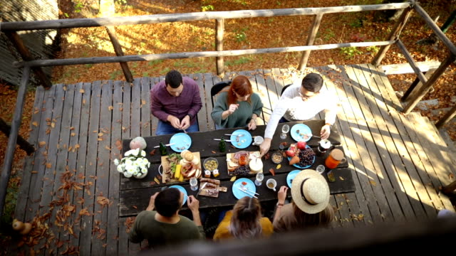 stockvideo's en b-roll-footage met high angle view van forest picnic - table top shot