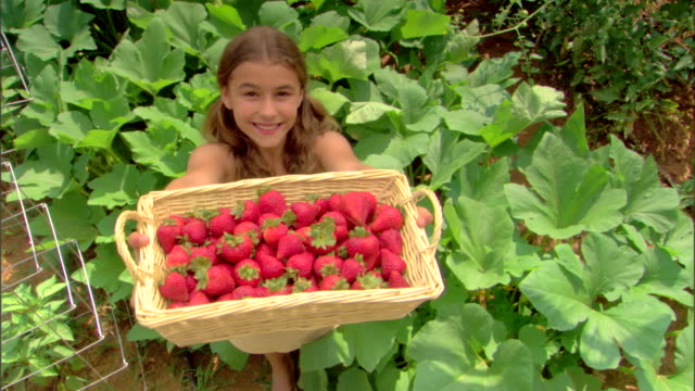 high angle view of girl with basket of strawberries - see other clips from this shoot 1425 stock videos and b-roll footage