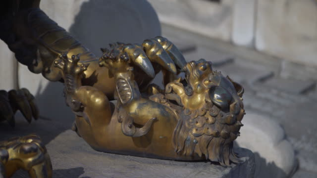 high angle view of golden lion statue - beijing, china - forbidden city stock videos & royalty-free footage
