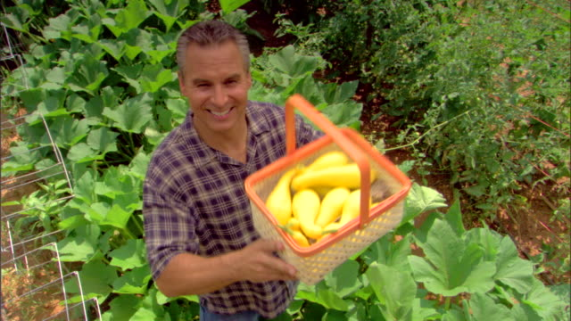 high angle view of man holding basket of squash - see other clips from this shoot 1425 stock videos and b-roll footage