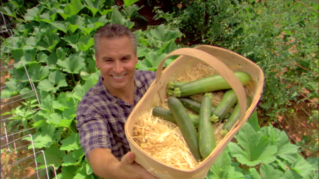 high angle view of man with basket of cucumbers - see other clips from this shoot 1425 stock videos and b-roll footage