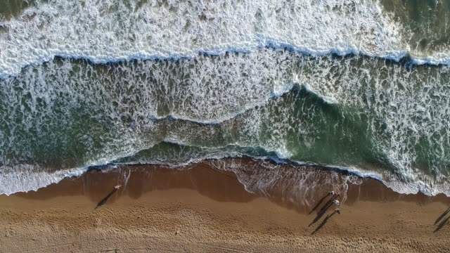 high angle view of people walking on the beach - water's edge stock videos & royalty-free footage