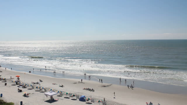 high angle view of the beach - myrtle beach stock videos & royalty-free footage