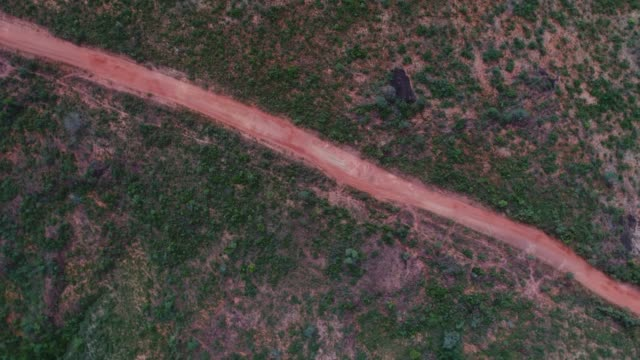 high angle view of the landscape of cerrado in tocantins, brazil - jalapao state park stock videos and b-roll footage