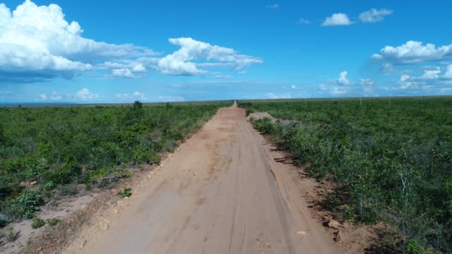 vídeos de stock, filmes e b-roll de opinião de ângulo elevado a paisagem do cerrado, tocantins, brasil - land