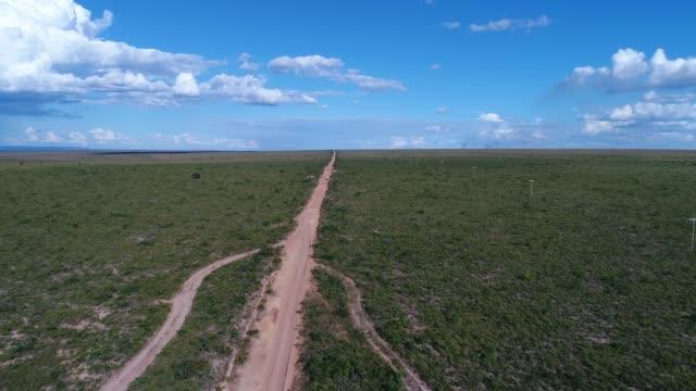 high angle view of the landscape of cerrado, tocantins, brazil - cerrado stock videos & royalty-free footage