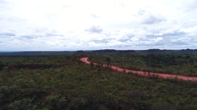 high angle view of the landscape of cerrado, tocantins, brazil - jalapao state park stock videos and b-roll footage
