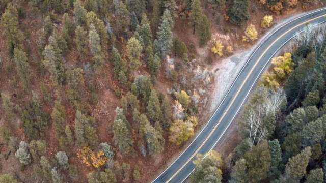 High angle view of tree-lined highway, Santa Fe, New Mexico, United States