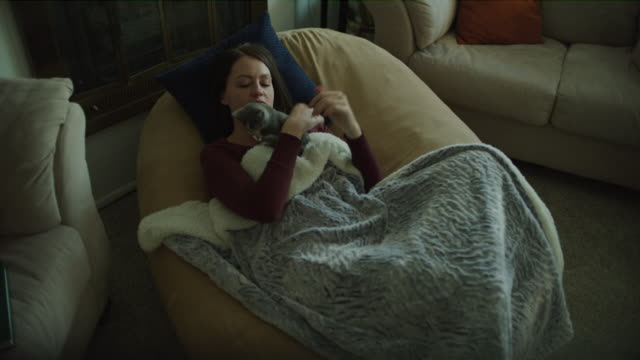 high angle view of woman sitting in armchair wrapped in blanket petting cat / murray, utah, united states - blanket stock videos and b-roll footage