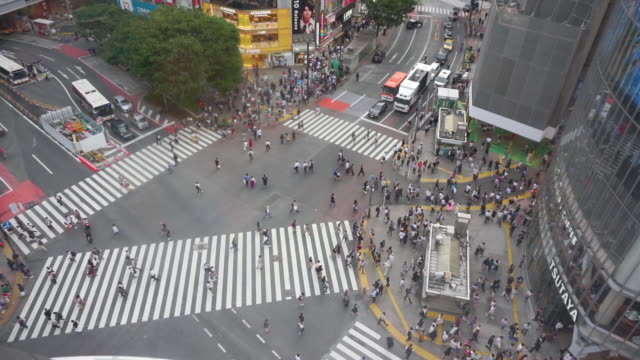 hd の高い角度の眺め。東京の渋谷交差点。 - 十字路点の映像素材/bロール