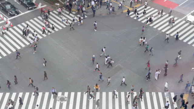 stockvideo's en b-roll-footage met hd hoge hoek te bekijken. shibuya crossing in tokio, japan. - shibuya shibuya station