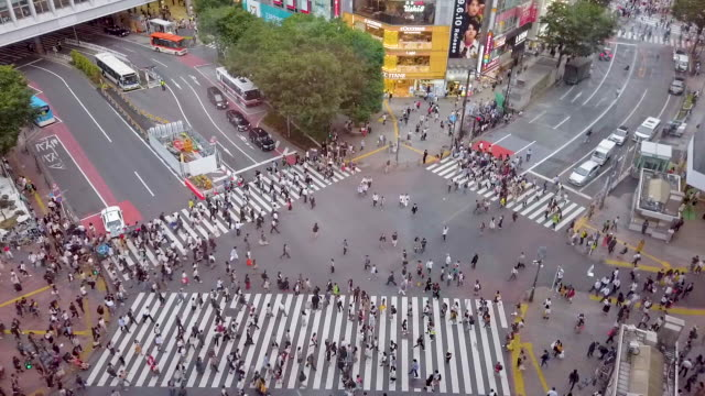 hd高角ビュー.東京の渋谷クロッシング - 十字路点の映像素材/bロール