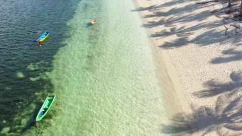 vídeos y material grabado en eventos de stock de vista de ángulo alto línea de costa tropical anclado barcos y sombras de palmeras - árbol tropical