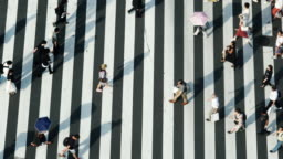 4K High Angle view wide shot of pedestrian people man and woman walking cross the street crosswalk with shadow on the road in afternoon summer day at Ginza, Tokyo, Japan.